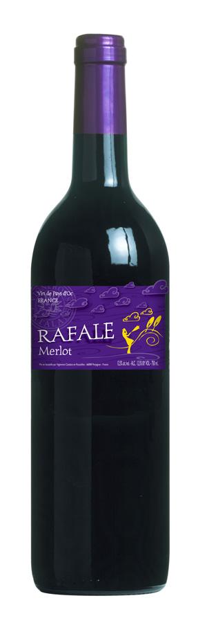Rafale-evolution